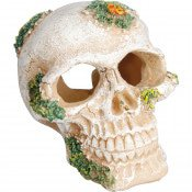Aquarium decoratie Skull