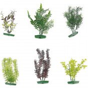 AQUARIUM PLANT ASSORTIMENT - M